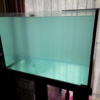 海水水槽 - 入水