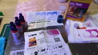 ケイ酸塩(テストキットと検査結果)